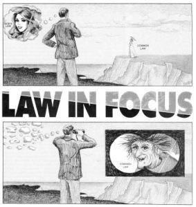 law-in-focus